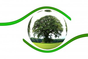 ecology-450590_1280